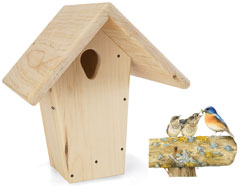 Droll Yankees Bluebird Nest Box w/Artwork